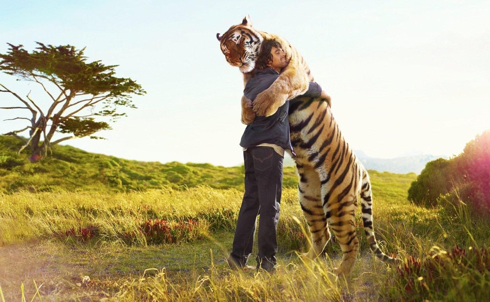 ТОП-15 животных, которые занесены в Красную книгу